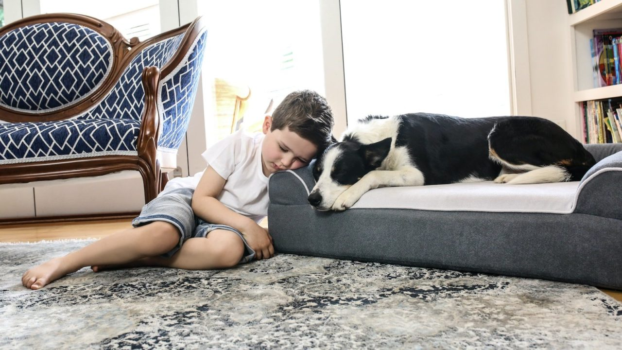 Dog-Cloud-Bed-Therapeutic-Pet-Bed-05.jpg