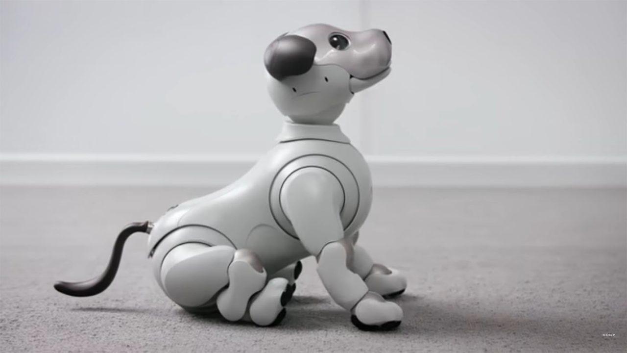 top-5-robots-featured.jpg
