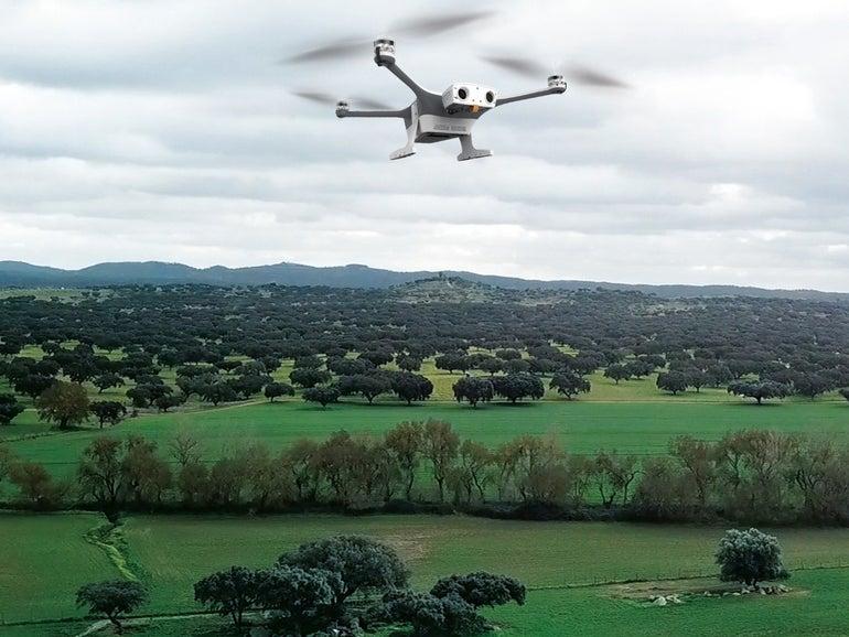 percepto-sparrow-drone-field.jpg